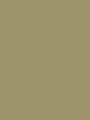 1040 олива глянец