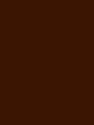 1041 шоколад глянец