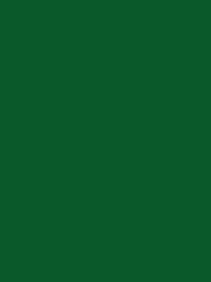 1042 зеленый глянец