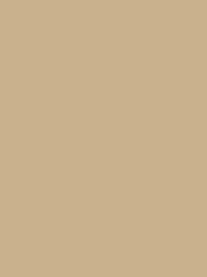 2720 ваниль глянец