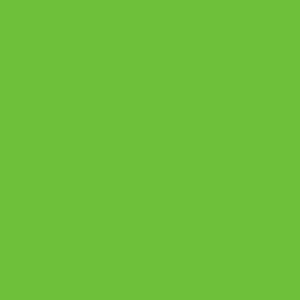 7190 Зеленая мамба ВS1