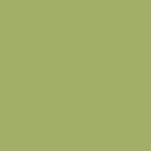 8996 Зеленый океан РЕ1