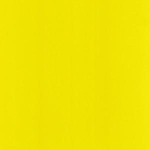 U 143 Ярко-желтый ST151