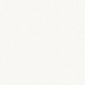 W 908 Белый базовый SТ21